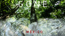 [gone] MEXICO: New York Show
