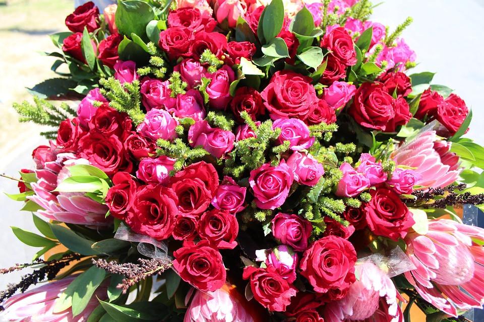 flowers-660666_960_720.jpg