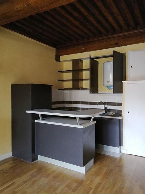canut vieux lyon appartement déco architecture intérieure idées décoration avant
