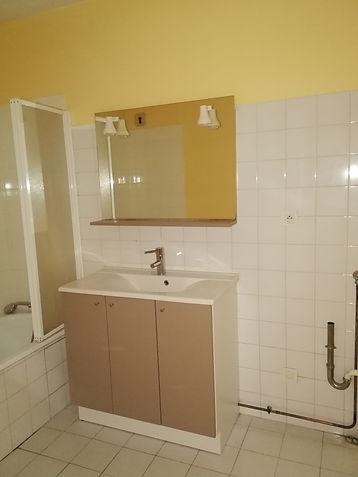 canut vieux lyon appartement déco architecture intérieure idées décoration salle de bain avant