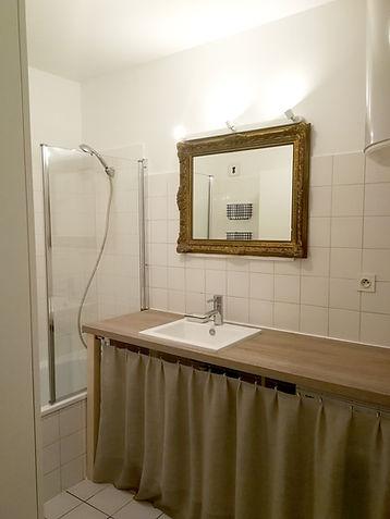 salle de bain canut vieux lyon appartement déco architecture intérieure idées décoration après