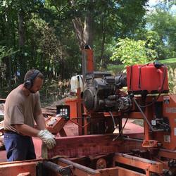 Sawing Cedar Timber