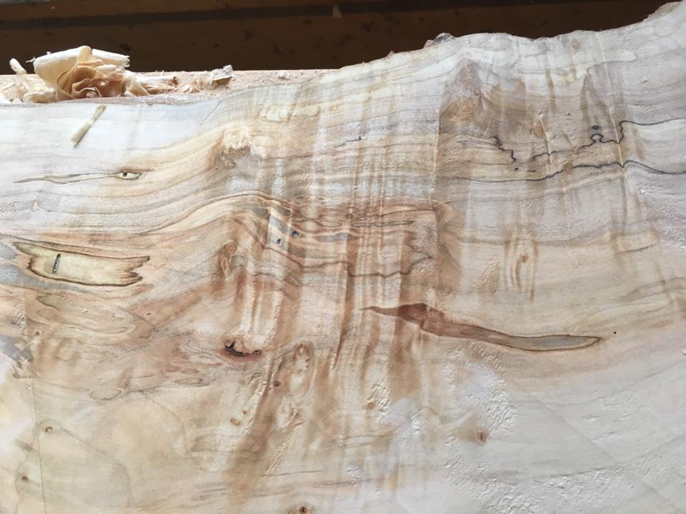 Spalted Curly Maple Slabs