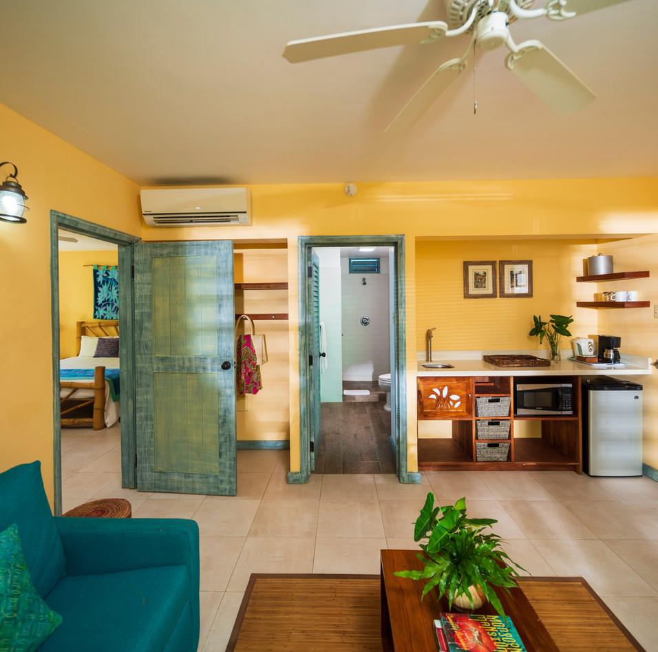 Suite Living Room + Sleeper Sofa + Bathroom #2 + Kitchenette