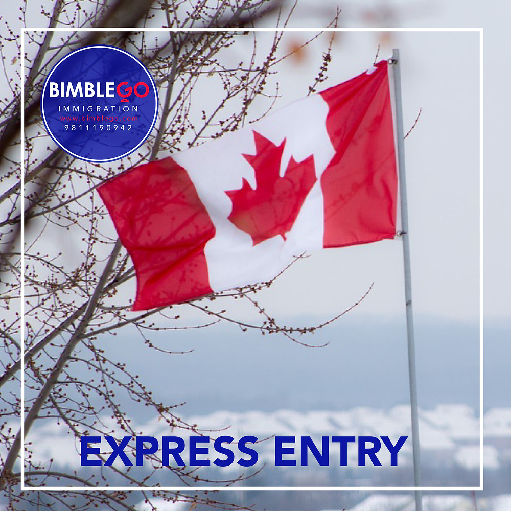 Permanent Residence, Buy Citizenship, Refugee Visa & Study Abroad!! www.bimblego.com USA / CANADA / AUSTRALIA / UK /EUROPE  #immigration #gurgaon #bimblegoconsultants
