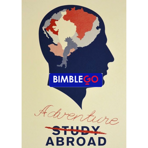 University study abroad: good for the character and the bank balance