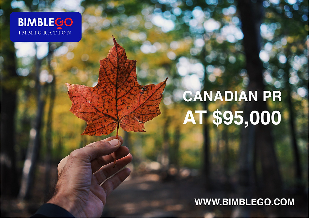 Be in Canada in less than 1 year! We have a special immigration package for you and your family. . 1 Free healthcare 2 Free education up to college  3 No tax on global income 4 Social services benefits 5 Right to reside and work anywhere in Canada 6 Apply for a Canadian passport – after living 3 out of 5 years in Canada 7 Dual citizenship allowed . www.bimblego.com . #bimblego #immigration #canadapr