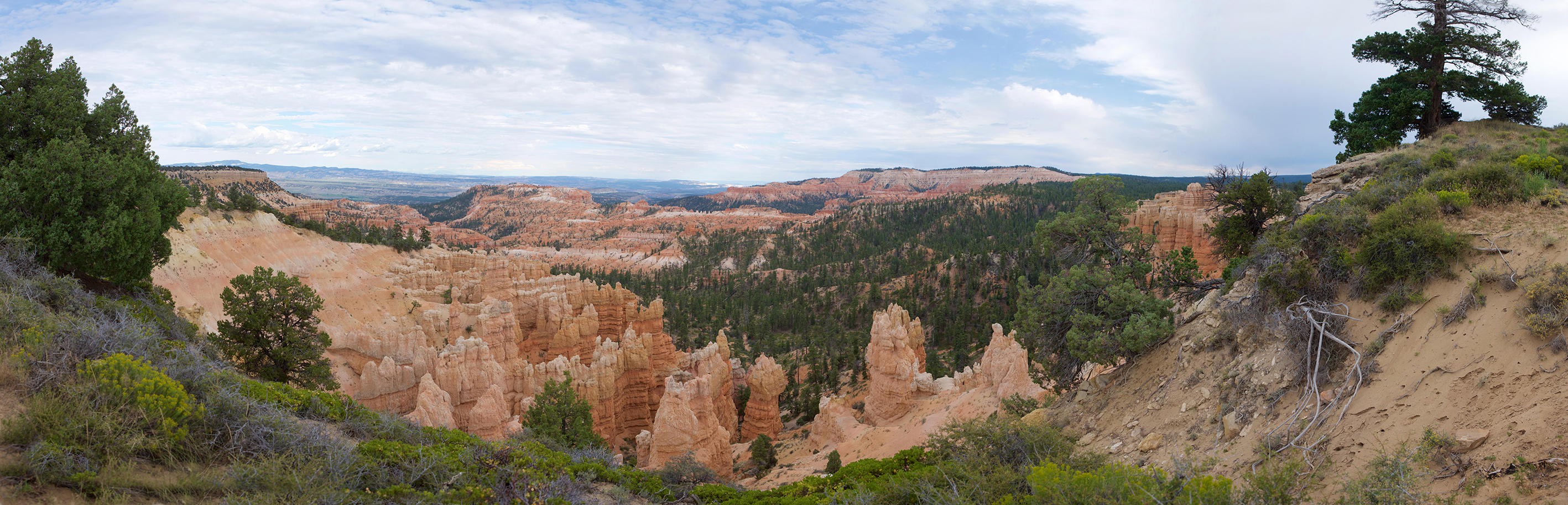 Brice Canyon, USA