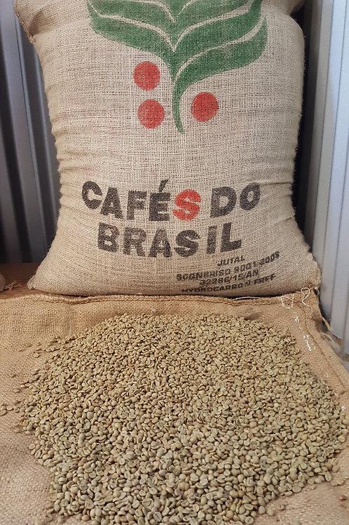 GREEN Beans -Brazilian