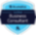 Acumatica Business Consultant Badge