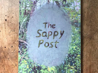Book Launch   The Sappy Post