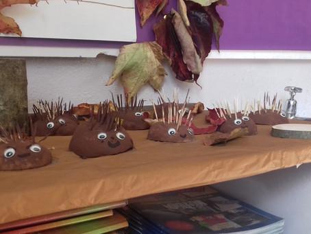Hedgehog Habitats in 4th/5th class.
