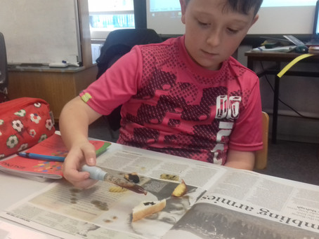 Scientists in 4th/5th Class - Testing for Starch