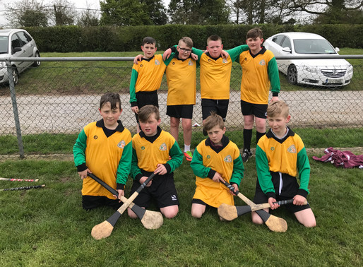 Our Hurling Stars ⭐️