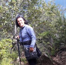 Sendero Llao Llao 1.jpg
