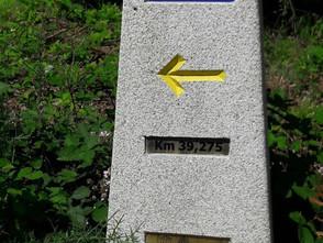 22 de julio: Etapa cuarenta y tres, de Boimorto a Arzúa