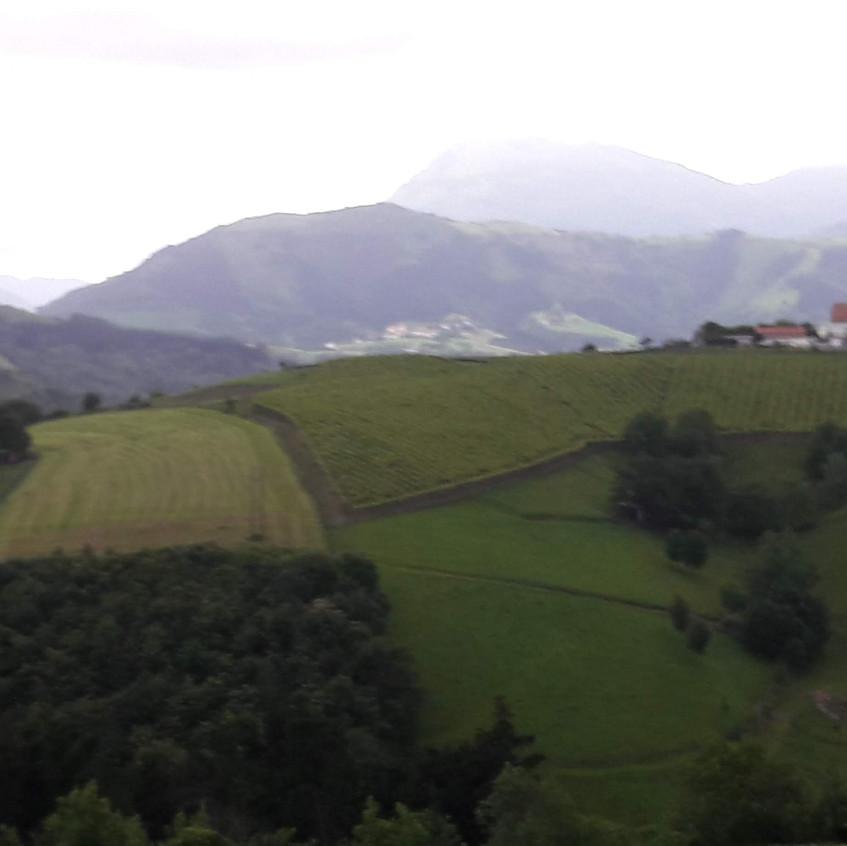 Entre Zumaia y Deba