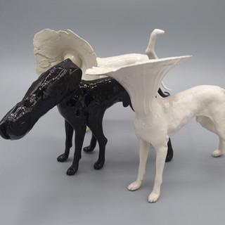 Dog1b.jpg