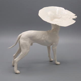 Dog4b.jpg