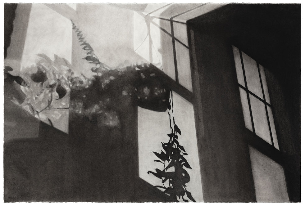 A charcoal drawing of streetlights casting shadows of windows and plants across a wall.