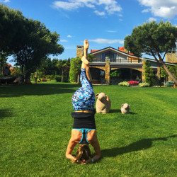 Grandmas Wonderland Yoga