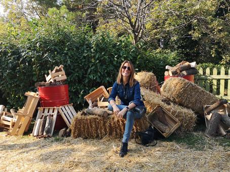 Wild BBQ, Büyükada'da Bienal, Akbank Caz Festivali, Halloween Partileri