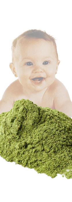 Olive Olive Soap Powder