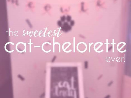 The Sweetest Cat-chelorette