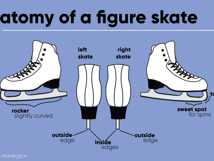 Learn the Lingo: The Skate Edition