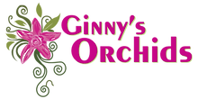 Ginny's Orchids