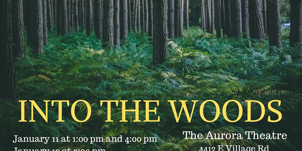 Into The Woods - 12th at 7:00