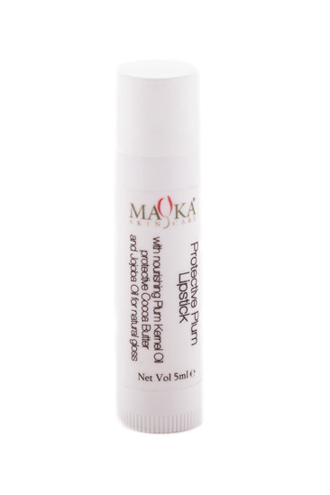Protective Lipstick 5g