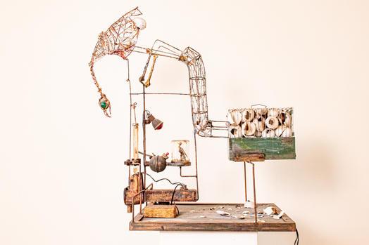 Bart Vankrunkelsven - Chicken of mass-prostruction