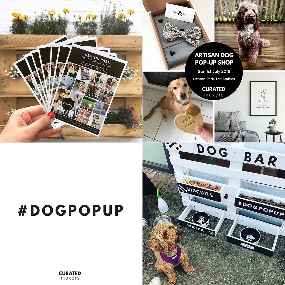 Dog Pop Up Shop promotions - Dogs in bandanas