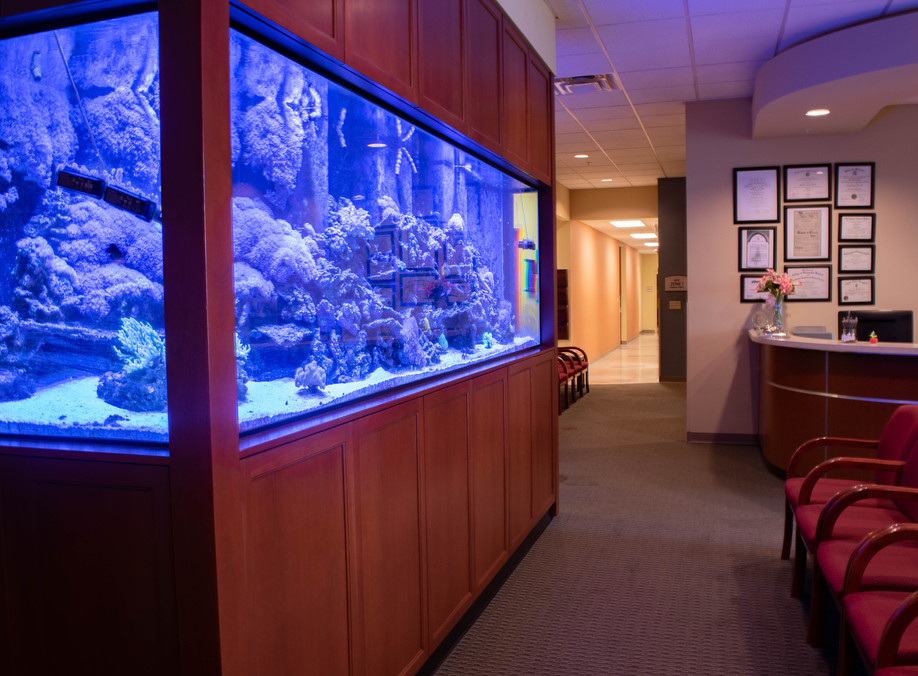 Lobby's Salt Water Aquarium