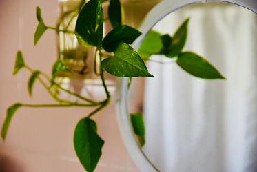 עציף ירוק במקלחת, ברקע חיפוי קיר ורוד.