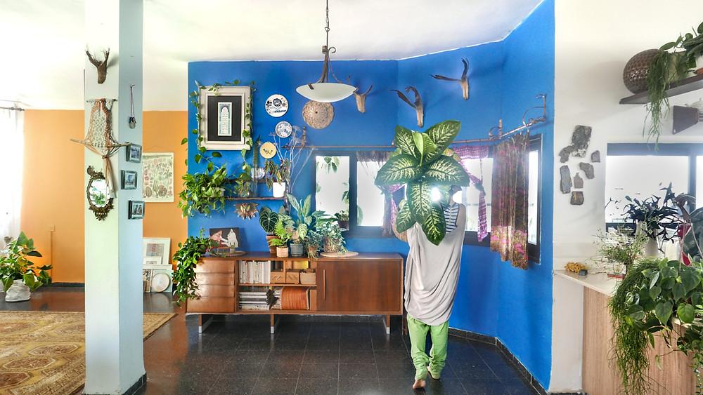 רינת טל בבית על רקע הקיר הכחול. מחזיקה עציצץ ענק ביד