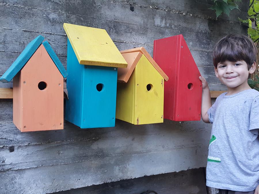 ילד עומד ליד שורה של שבחים. בתים צבעוניים לציפורים