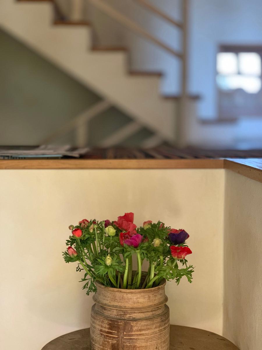 בית. כד עם פרחי נורית. צילום נעה בר לב דוידור