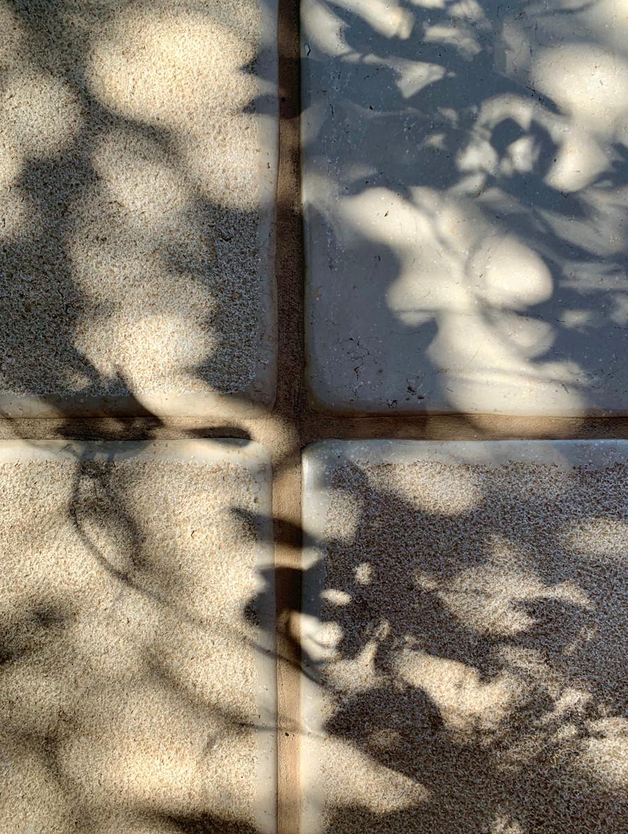 תמונה של רגש. חומרים וטקסטורות. אור וצל. צילום נעה בר לב דוידור