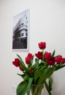 צבעונים אדומים ותמונה בחשחור לבן.