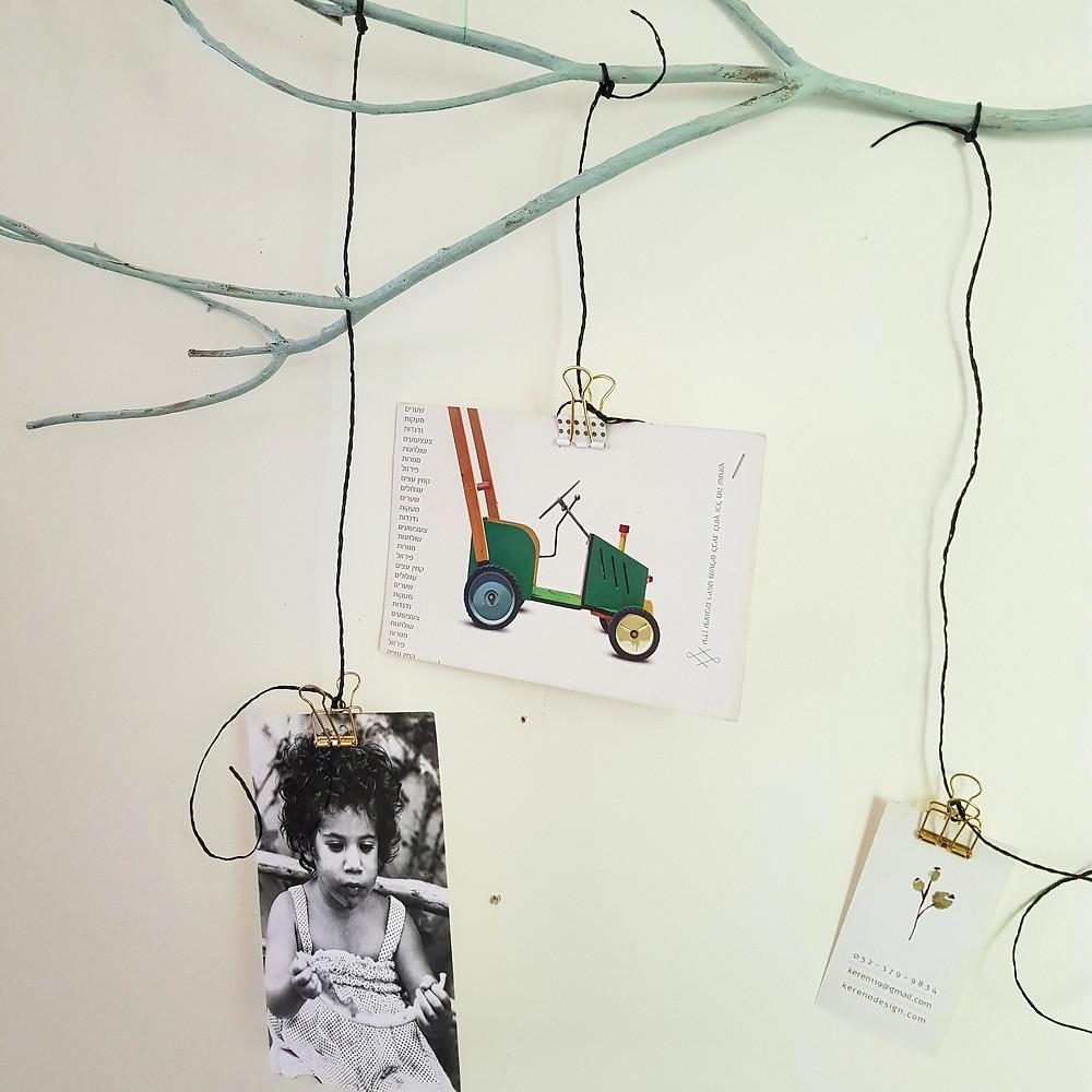 ענף שהפך למתלה לתמונות, גלויות ומזכרות