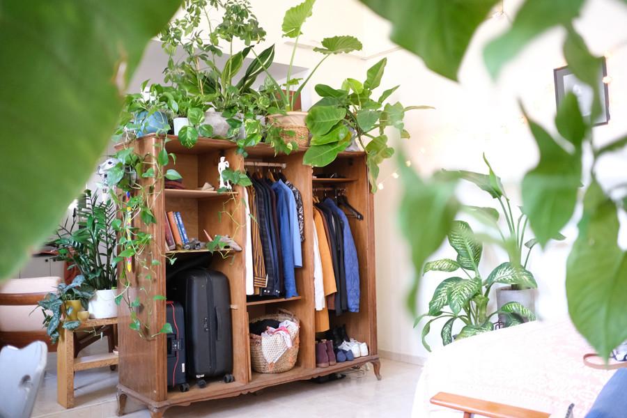 ארון בגדים פתוח מעץ שהוא בסיס להמוני עציצים.