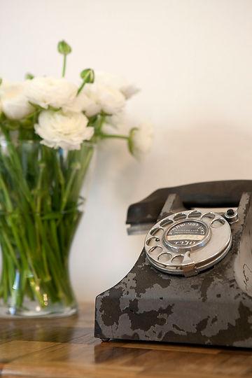 טלפון חוגה וינטג' ונוריות פורחות.