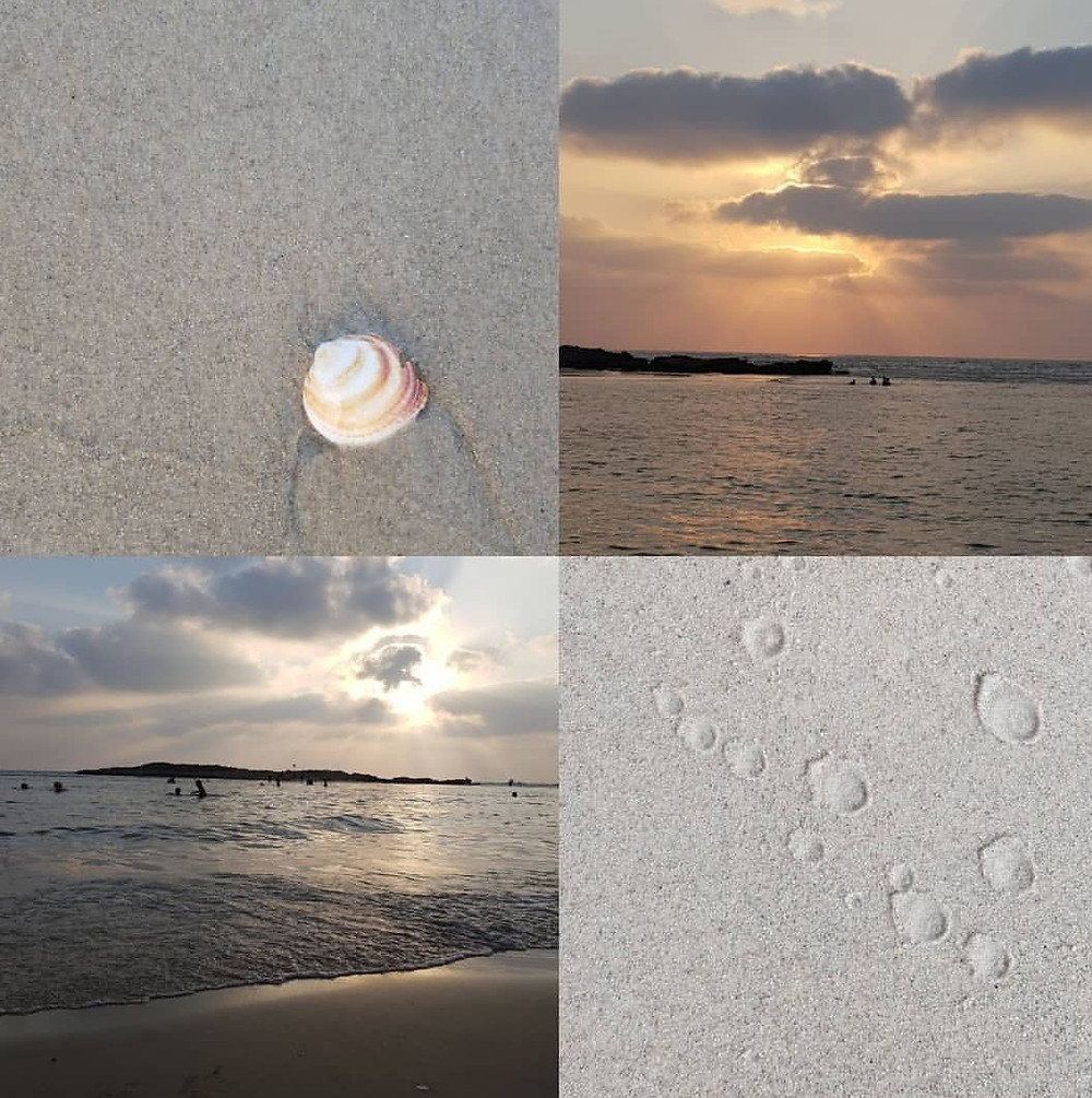 השראה מחוף הים