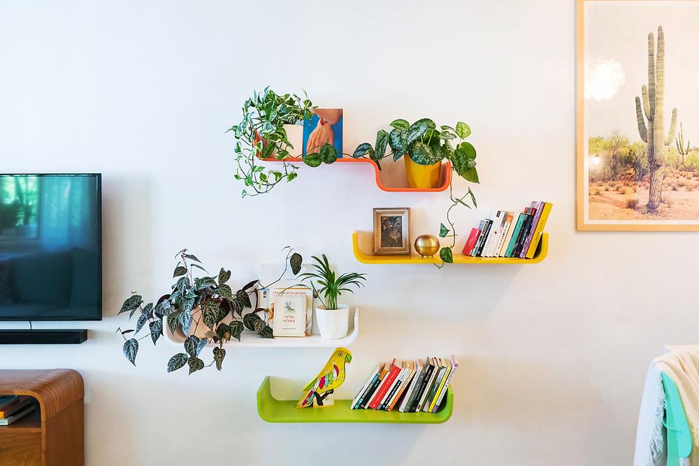 מדפים מרחפים על הקיר בגוונים של ירוק כתום וצהוב ובצד תמונה של קקטוס. מתוך בית בעיצוב דיקלה מנחם.