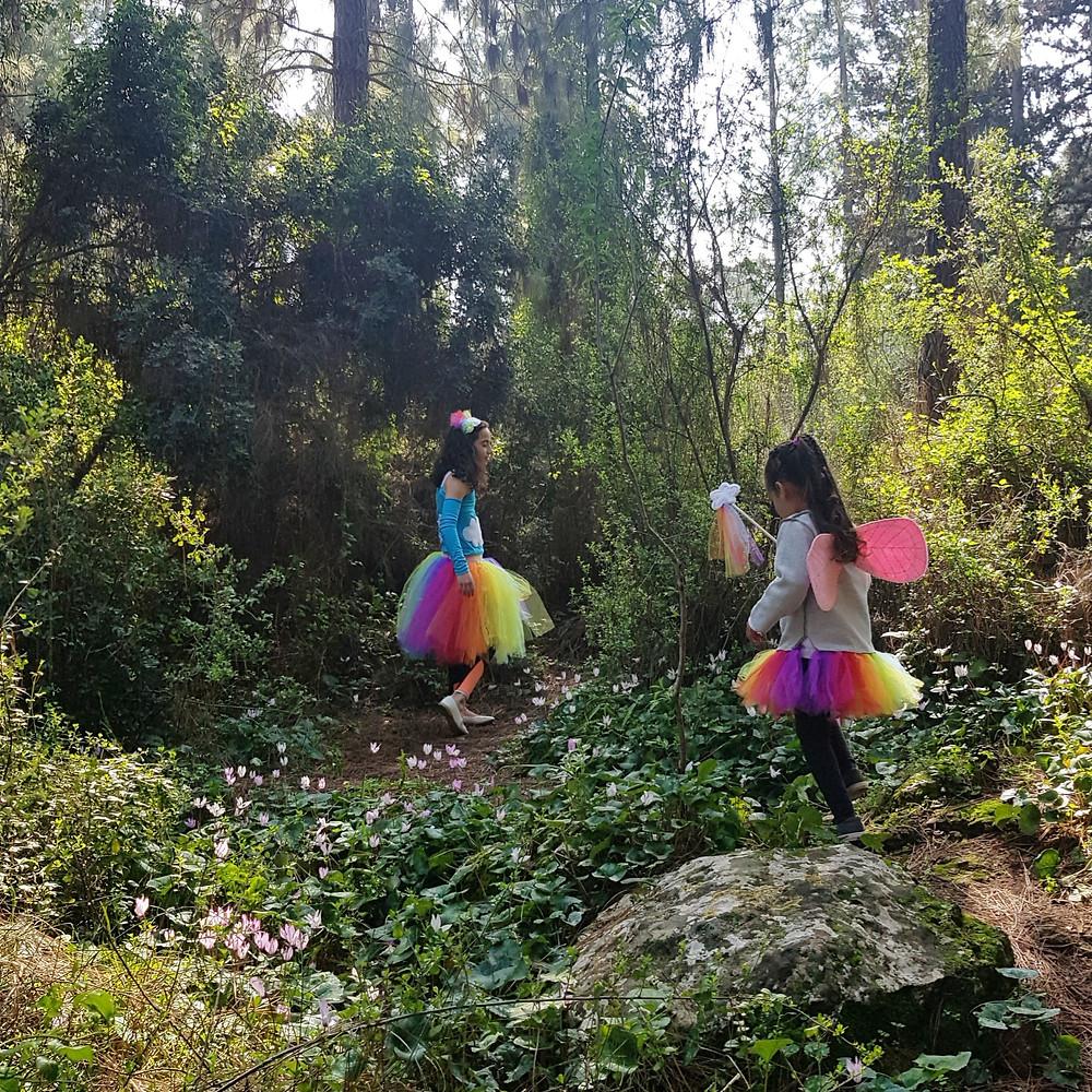 פיות הקשת בענן ביער הקסום