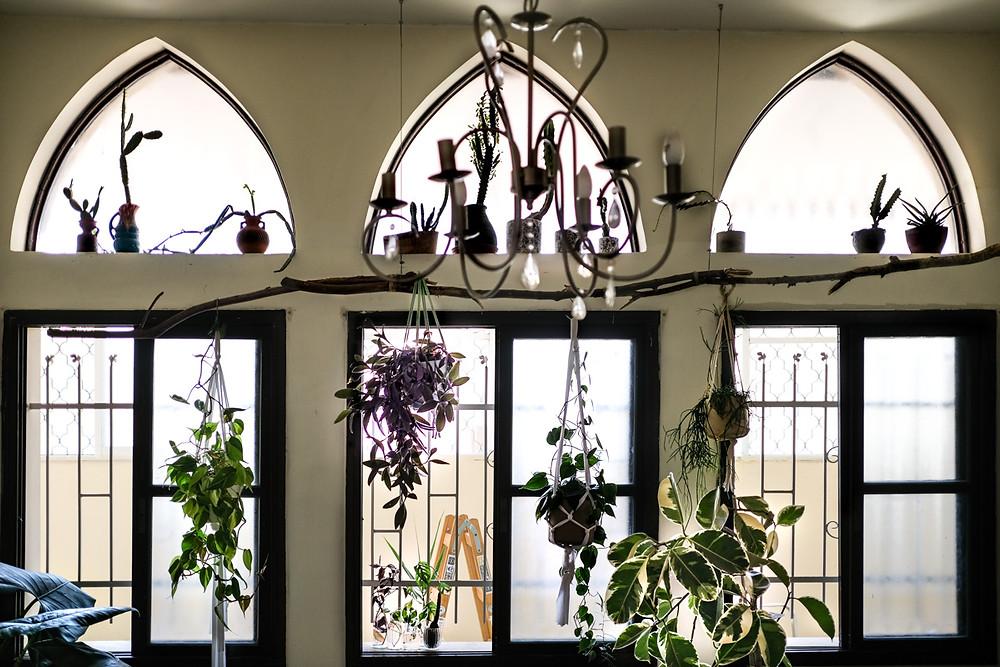 חלון שלוש קשתות מחודדות על רקע של צמחייה שופעת.