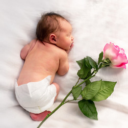 Baby and a Rose