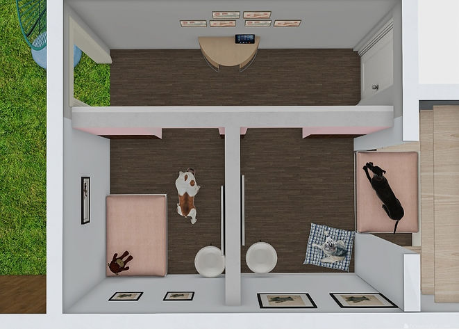 Aerial View of Dog Rooms.jpg